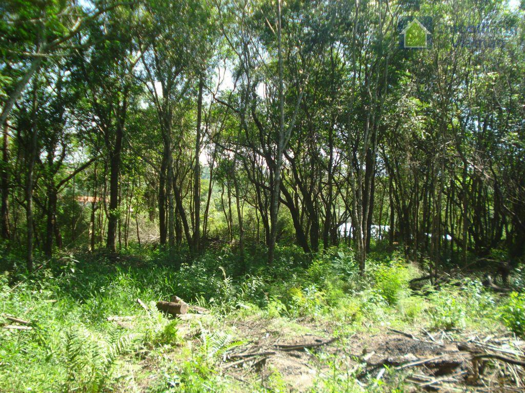 excelente terreno alto e plano, em um lugar diferenciado da cidade de viamão, terreno medindo 1050m,...