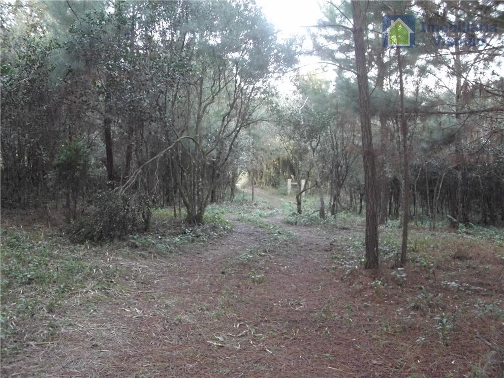 Sítio rural à venda, Passo da Areia, Viamão.