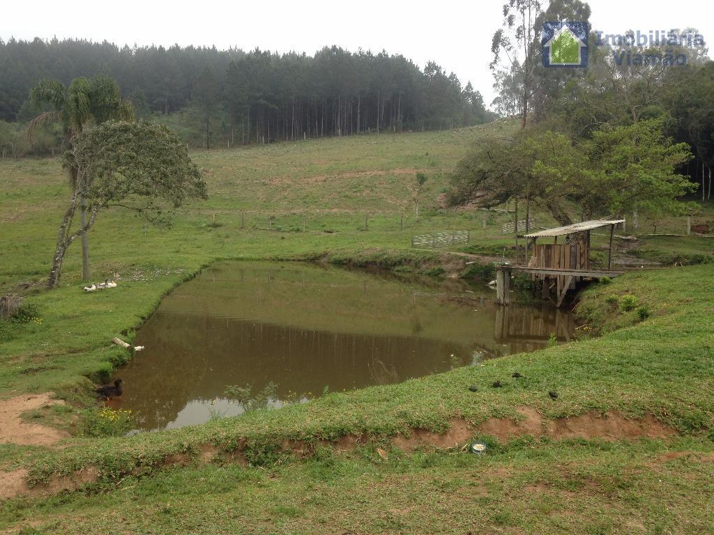 sítio localizado no espigão, ótimo ambiente, lindo local, ótimo lugar para descanso e lazer, açude com...