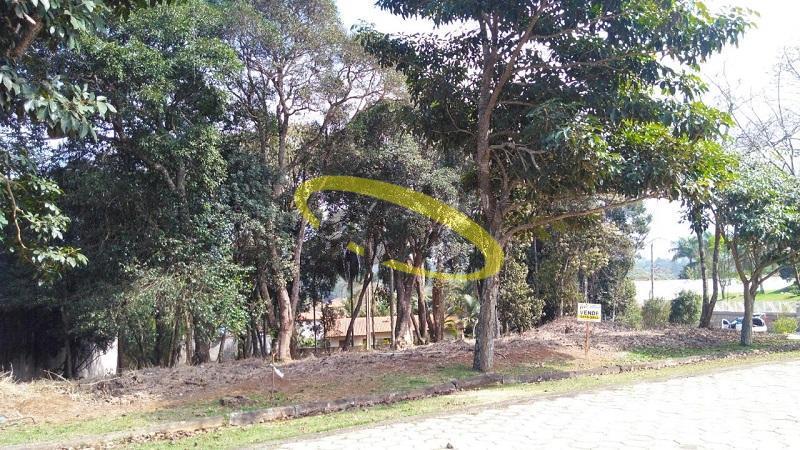Terreno residencial à venda, Jardim San Ressore (Caucaia do Alto), Cotia.