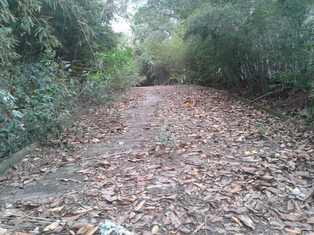 Terreno em Parque Jatibaia (Sousas), Campinas - SP