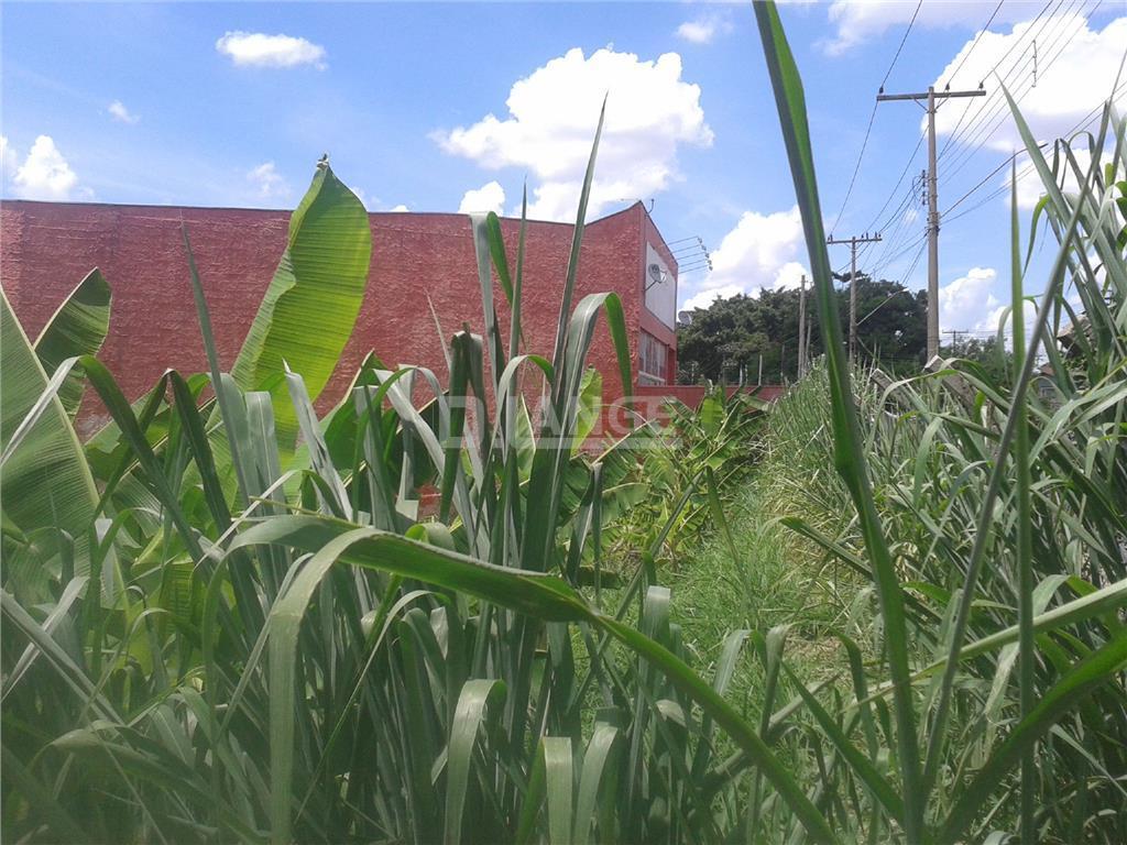 Terreno em Jardim Paulicéia, Campinas - SP