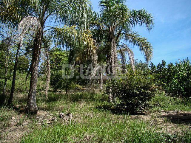 Chácara em Parque Valinhos, Valinhos - SP