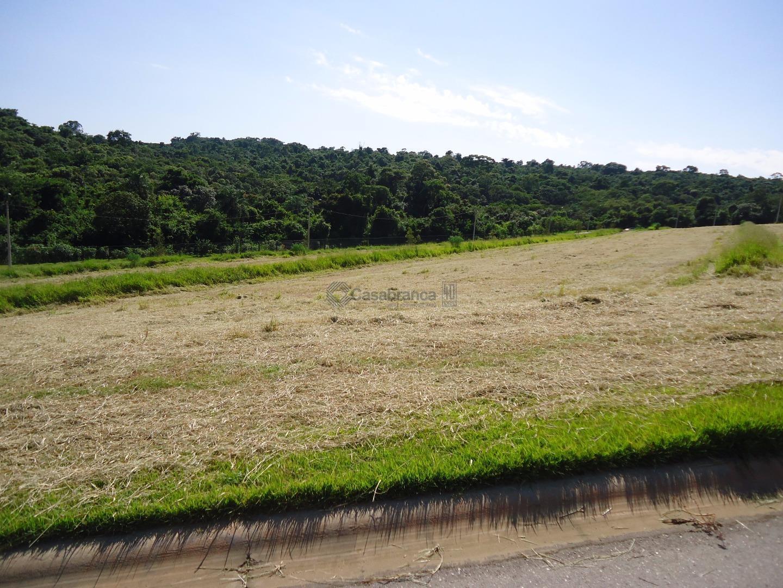 Terreno residencial à venda, Eco Residencial Fazenda Jequitibá, Sorocaba - TE2686.