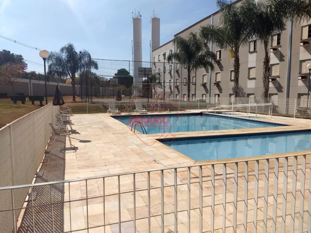 Apartamento residencial para locação, Vila Virgínia, Ribeirão Preto - AP2816.