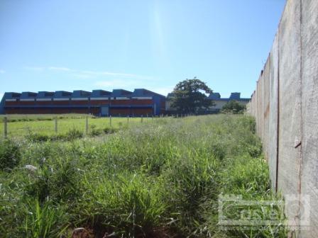 Terreno  comercial à venda, São Benedito, Uberaba.