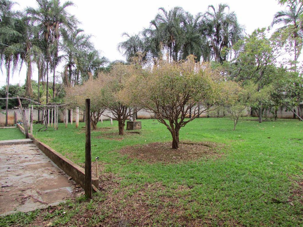 Terreno comercial à venda, Parque Amazônia, Goiânia.