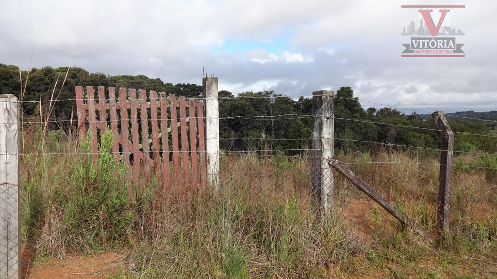 Terreno 360m² à venda, Barro Preto, São José dos Pinhais - TE0061 - Vitória Imóveis