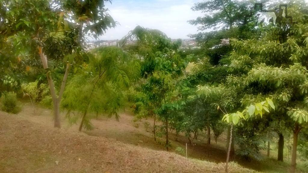 Terreno residencial à venda, Jardim Ibirapuera, Campinas.