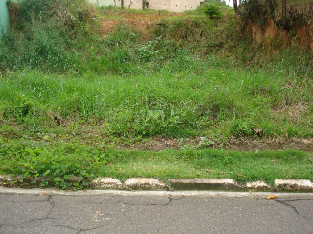 Terreno residencial à venda, Jardim Monte Verde, Valinhos - TE0320.