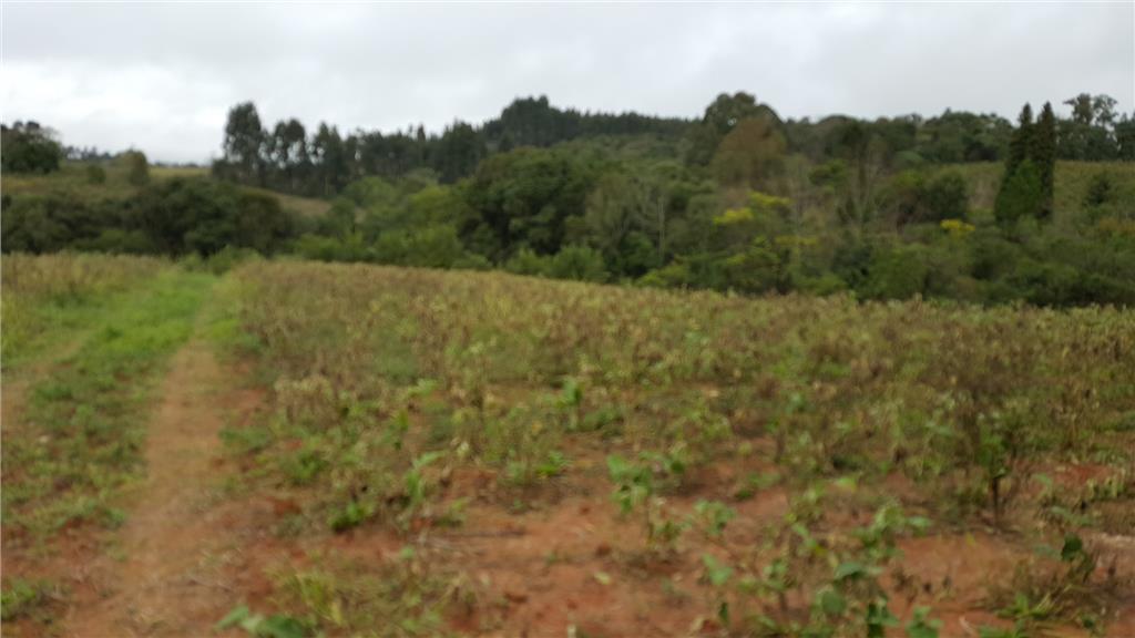 Terreno em Ribeirão Vermelho, Quitandinha - PR
