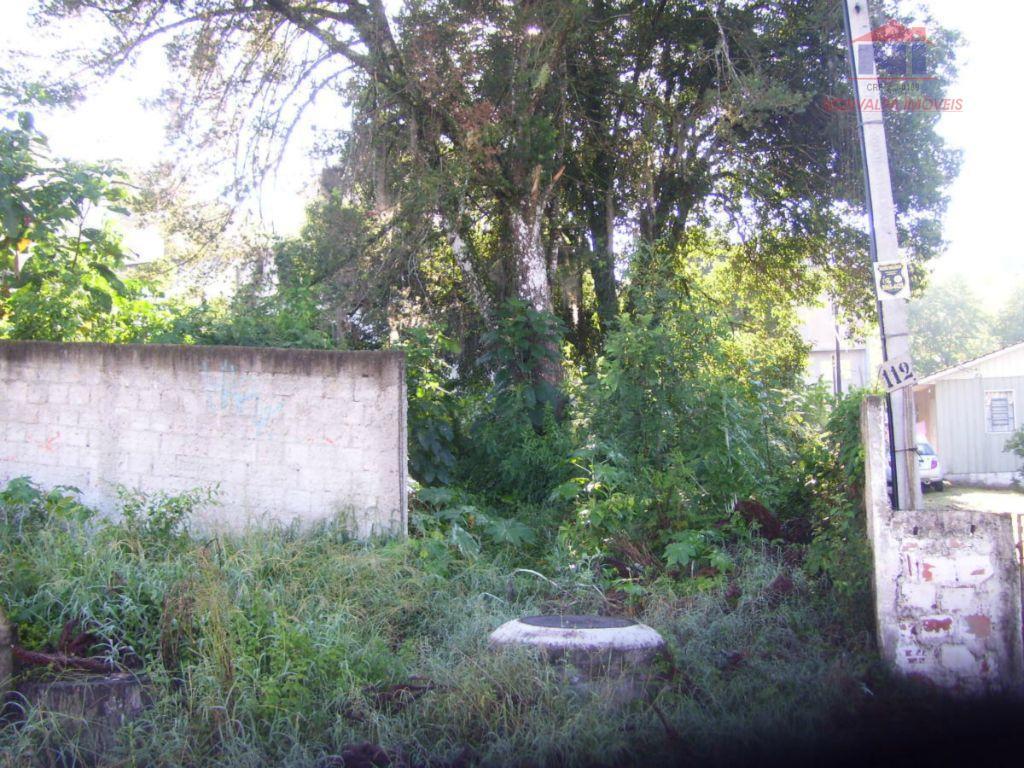 Terreno residencial à venda, São Lourenço, Curitiba.