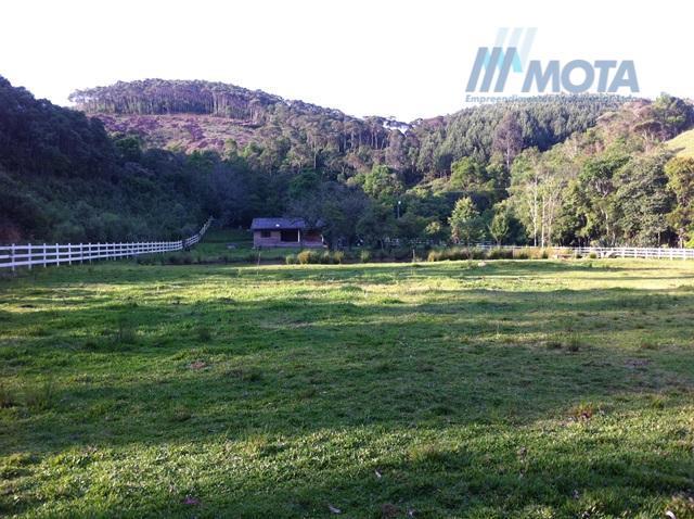 Sitio formado e com reflorestamento em Bocaiuva do Sul