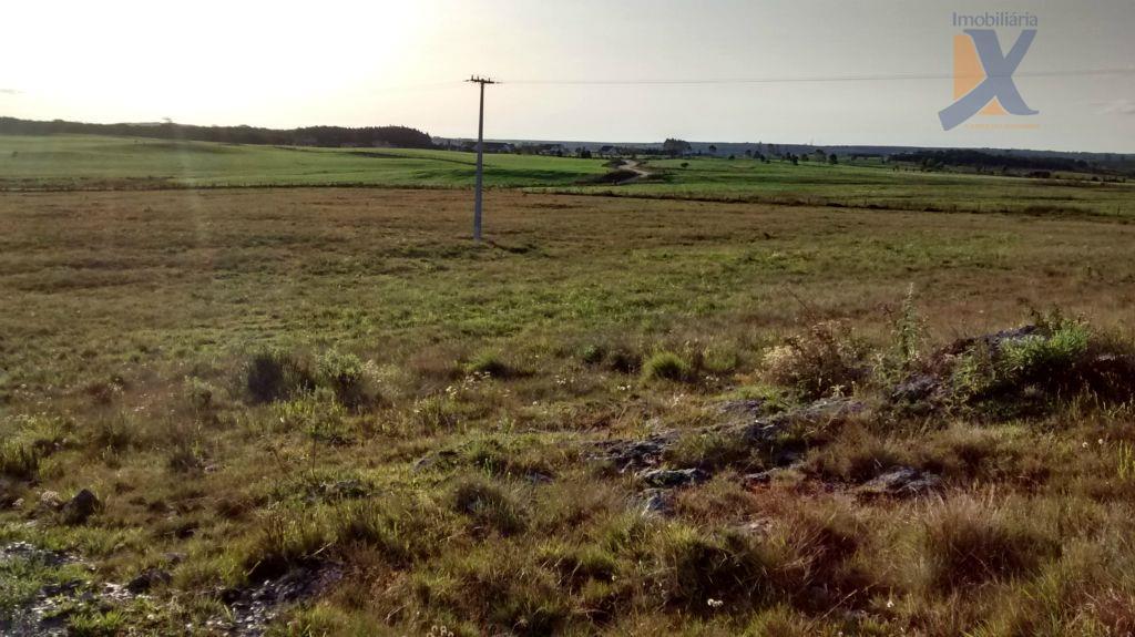 Chácara rural à venda, Balsa Nova, Balsa Nova.