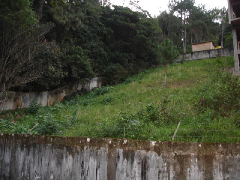 Terreno residencial à venda, Cabeçudas, Itajaí - TE0175.