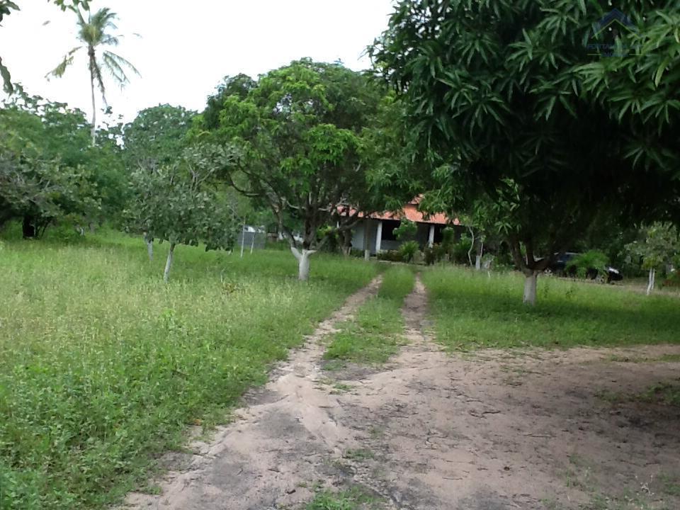 Terreno residencial à venda, Queimada, Horizonte.
