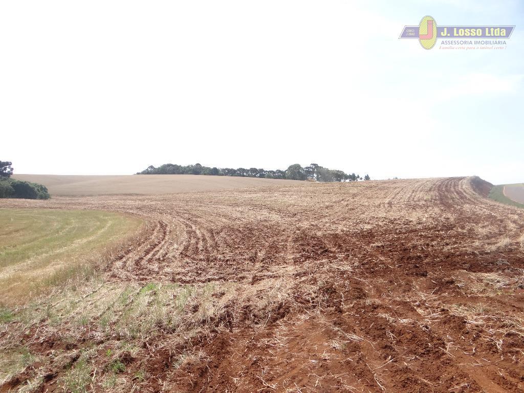 Fazenda  rural à venda, Zona Rural, Campina do Simão.
