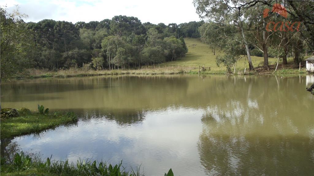 Chácara rural à venda, Zona Rural, Guarapuava.