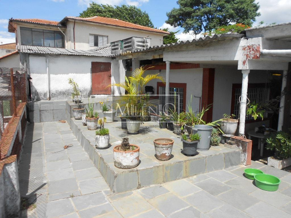 Casa de 3 dormitórios à venda em Vila Santa Catarina, São Paulo - SP
