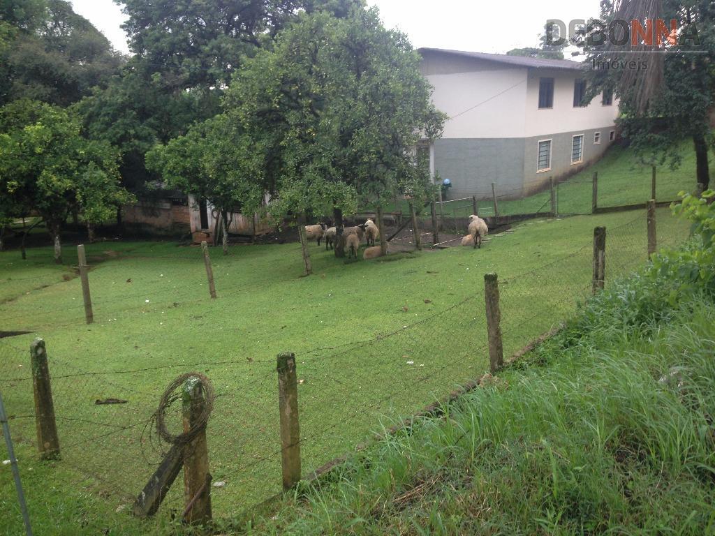 área de 4.000 m2localizado na rua das laranjeiras, s/n colônia gabriela - almirante tamandaré prárea residencial,...