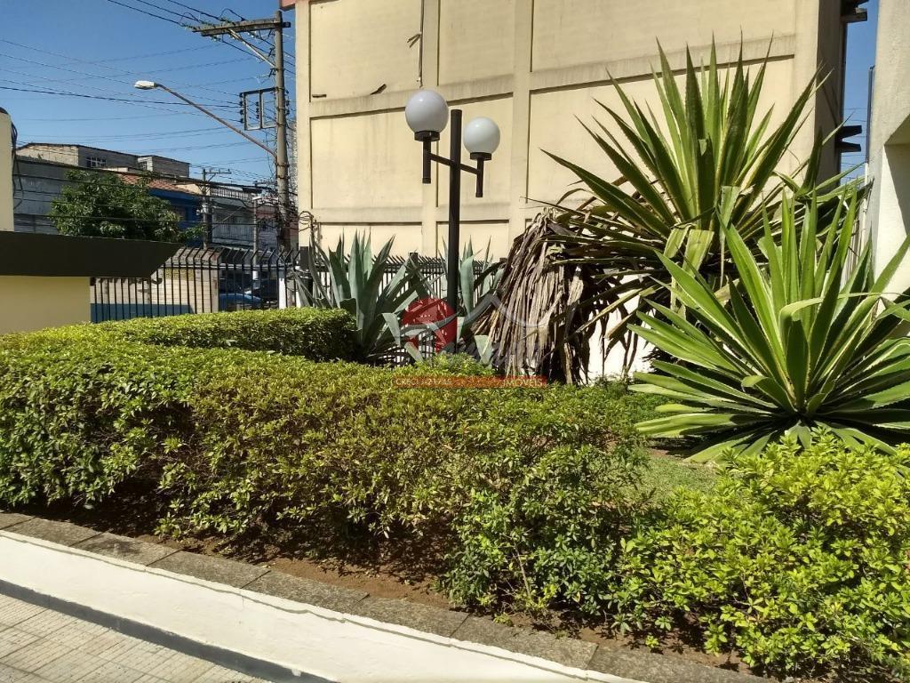 Apartamento de 2 dormitórios à venda em Vila Marieta, São Paulo - SP